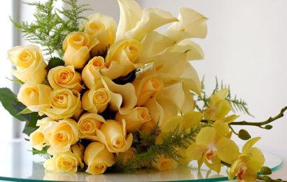 Những bó hoa hồng chúc mừng sinh nhật ấn tượng