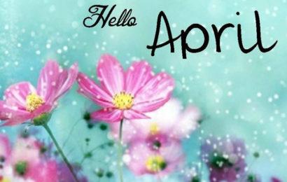 Bộ tuyển tập những Status chào tháng 4 hay chia sẻ trên facebook