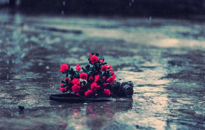 20 hình ảnh, hình nền mưa full hd cho máy tính đẹp