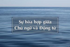 su-hoa-hop-giua-chu-ngu-va-dong-tu-trong-tieng-anh
