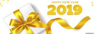 Ảnh bìa facebook chúc mừng năm mới 2019 tết kỷ hợi đẹp số 5