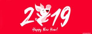 Ảnh bìa facebook chúc mừng năm mới 2019 tết kỷ hợi đẹp số 2
