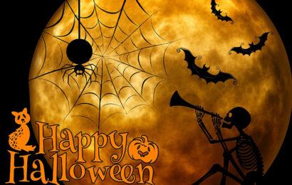 Tuyển chọn những hình nền halloween độc đáo nhất cho ngày lễ hóa trang