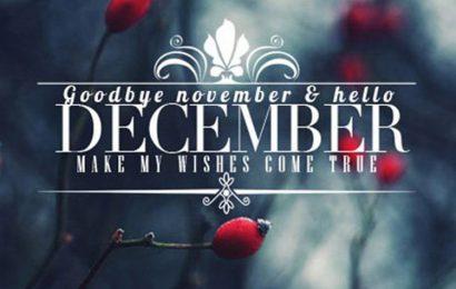 Tuyển tập cover, ảnh bìa chào tháng 12 – Hello December lung linh sắc màu
