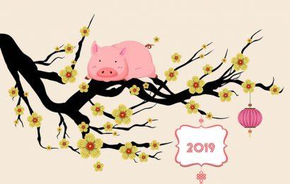 Thơ chúc tết – những bài thơ chúc mừng năm mới 2019 hay và ý nghĩa