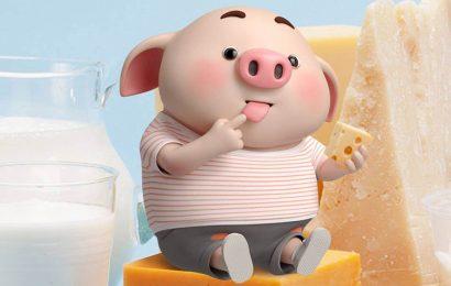 Hình nền chú lợn ngộ nghĩnh cho iphone – hình nền tết Kỷ Hợi cho iphone