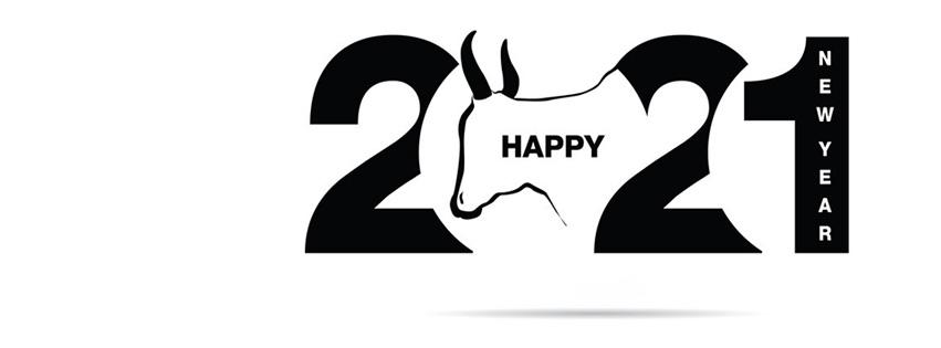 Ảnh bìa chúc mừng năm mới - Happy New Year 2021 lung linh số 48
