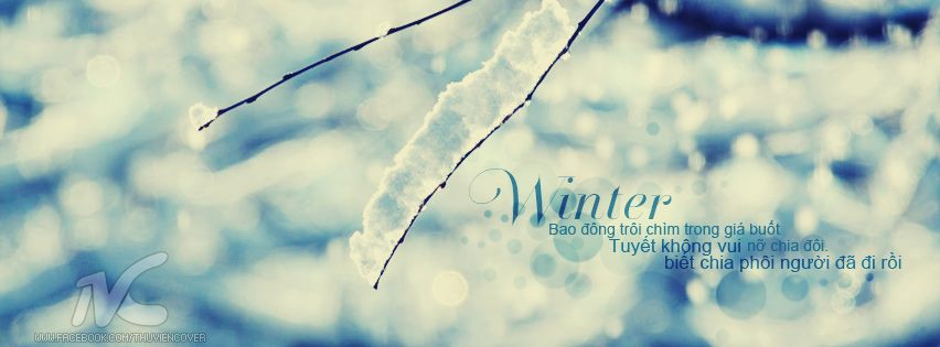 Cover facebook mùa đông lạnh giá đầy tâm trạng số 18
