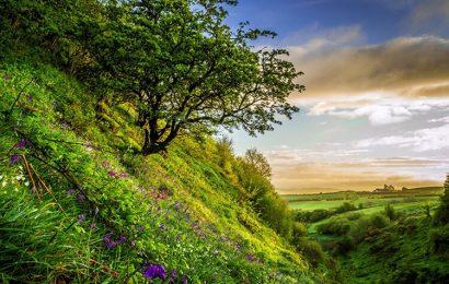 Top 50 hình nền phong cảnh thiên nhiên mùa hạ – summer wallpaper full hd