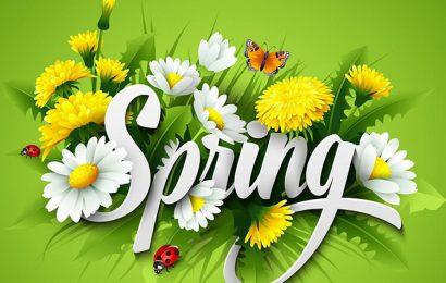 Top 50 hình nền thiên nhiên phong cảnh mùa xuân lung linh sắc hoa full hd