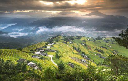 Top 20 hình nền ruộng bậc thang và cánh đồng lúa Hoàng Su Phì của Hà Giang
