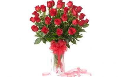 Top 100 bó và lọ hoa hồng dành tặng người yêu ngày valentine lãng mạn