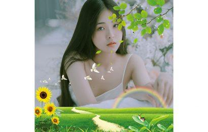 Ghép ảnh vào khung hình phong cảnh hoa hướng dương độc đáo