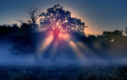 Top 50 hình nền mặt trời mọc chào ngày mới – Good Morning đẹp