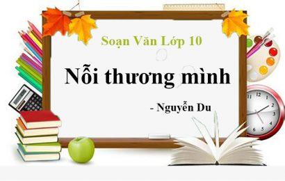 """Tổng hợp các bài văn mẫu phân tích tác phẩm"""" Nỗi thương mình"""" (Nguyễn Du)"""