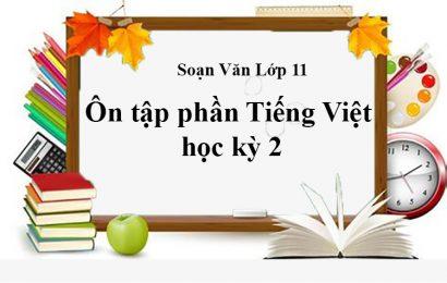 """Tuyển chọn bài soạn về """"Ôn tập phần tiếng Việt lớp 11 học kì 2"""" ngắn gọn"""