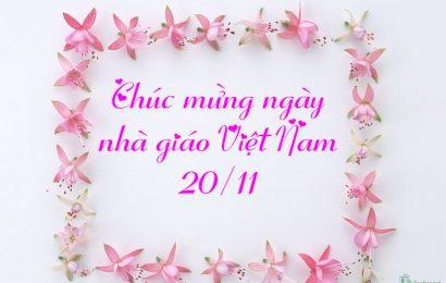 Top 30 ảnh bìa facebook chào mừng ngày nhà giáo Việt Nam 20/11
