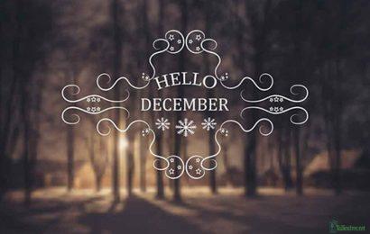 Top 25 ảnh bìa facebook chào tháng 12 – Hello December
