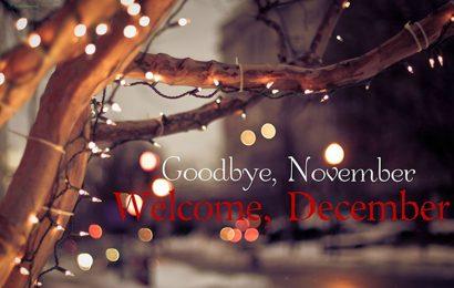 49+ hình ảnh kèm câu nói, stt hay tạm biệt tháng 11 – Goodbye November