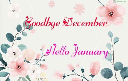 Top 50 hình ảnh kèm status tạm biệt tháng 12-Goodbye December